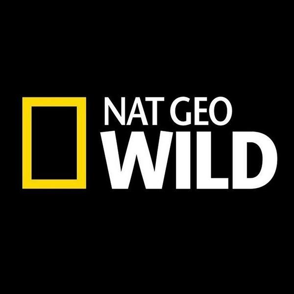 Nat_Geo_Wild_BLOG
